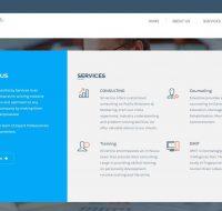 Silverline Consultancy Services
